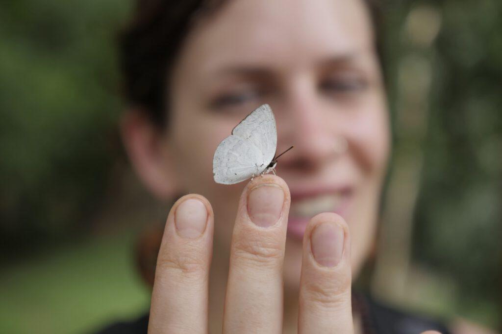 Heilung durch Schmetterling